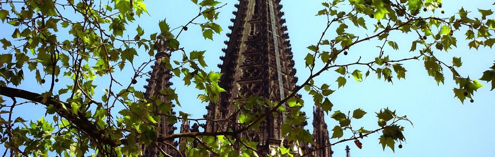 Blick auf den Kölner Dom nahe der Zahnarztpraxis